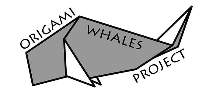Blog News About Origami Whales Project