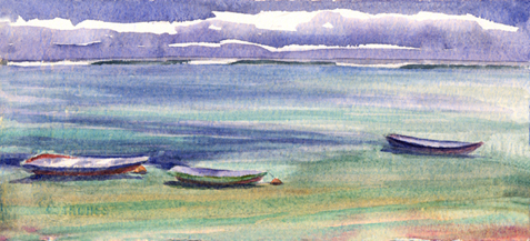 Kelp Boats