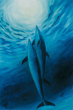 Dolphins Into Light