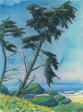 Cypress at Sands