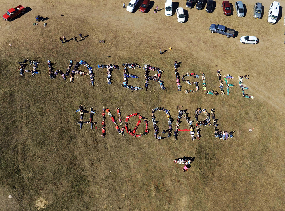Standing Rock, DAPL, and how #WaterIsLife for all Beings including Dolphins & Whales