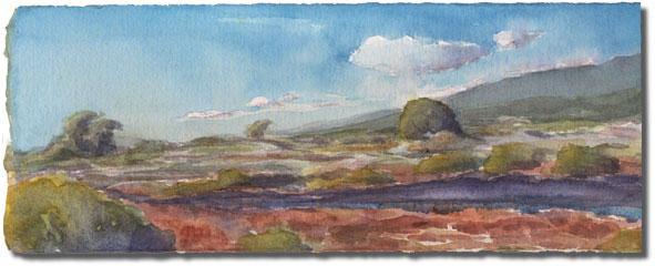 Carpinteria Salt Marsh (Ash Street View)