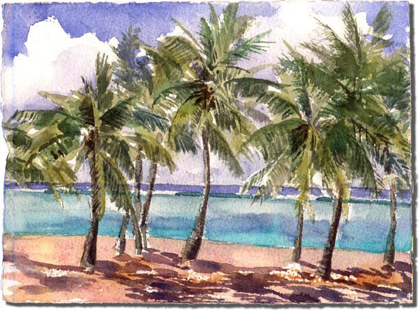 Ellen's Palms