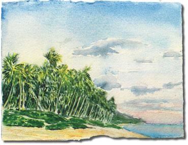Sunrise On Tongatapu