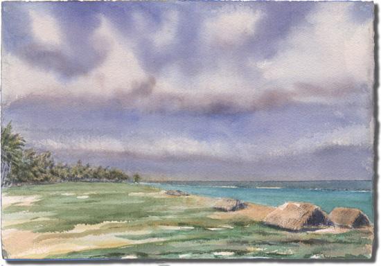 Kelp Huts